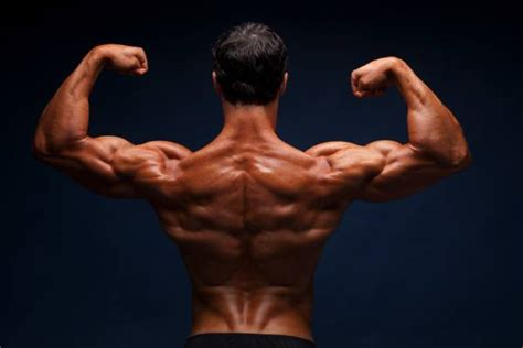 How to Build Muscle Mass on a Plant-Based Diet   Breaking