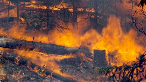 No letup in battle against Ontario forest fires