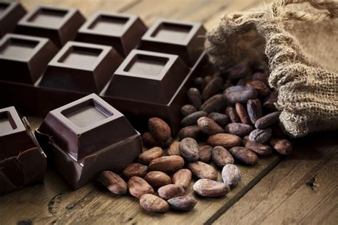 Get, Set, GO: 21 Foods That Elevate Your Energy Levels for